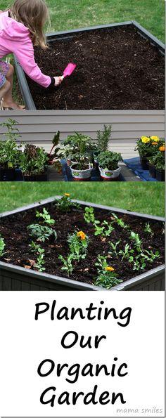 Gardening with kids: planting an organic garden! #organic #gardening #DigIn #ad #HeartOutdoors
