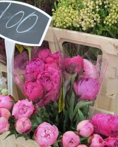 Flower market peonies, via Bobbi's blog.  SUCH a beautiful photo!