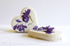 Hey, I found this really awesome Etsy listing at https://www.etsy.com/listing/209119006/wildflower-seed-bomb-hearts-200-plus