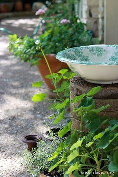 diy bird bath w. antique basin