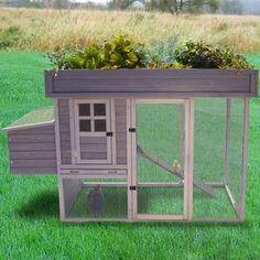 Garden Hen House