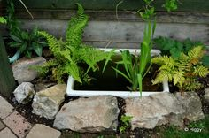 Old sink pond bath pond recycle upcycle reuse wildlife garden Belfast Sink Planter, Belfast Sink Garden, Garden Sink, Bog Garden, Garden Water, Belfast Sink Water Feature, Water Gardens, Back Gardens, Small Gardens