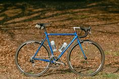 Beautiful Bicycle: Spencer's Landshark Road