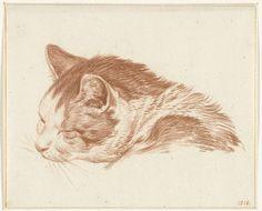 Kop van een slapende kat, Jean Bernard, 1818