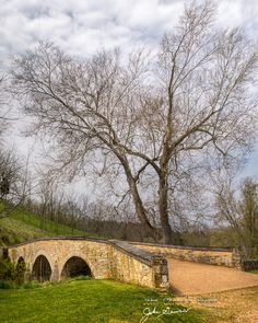 Antietam National Battlefield - Sharpsburg, Maryland  ~the Sycamore Witness Tree at the Burnside Bridge stood where the Civil War battle was fought. It saw the sharpshooters of the Georgian Militia taking the lives of Union troops in the bloodiest single day battle.