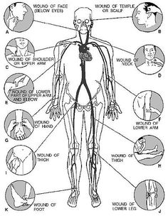 back pressure points | ... pressure points and how to correctly apply pressure at these points