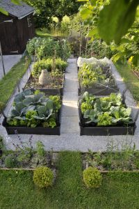 Vote for this garden until August 15, 2015. This is Judy's wonderful edible cottage garden, an amateur entry in Gardenista's yearly garden competition. Category: Best Edible Garden (professionals and amateurs alike).