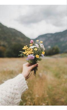Wild flowers little bouquet