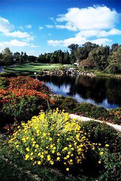 The gorgeous Aviara Golf Club in Carlsbad, California designed by Mr. Palmer.