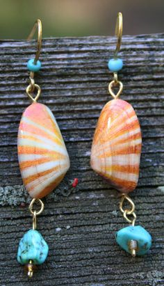 Jewelry: Sunset Coppery Coquina Shell Earrings with Turquoise! A Summertime beach favorite - wouldn't you love to have some of your favorite shells made into fine jewelry, their colors captured from fading?