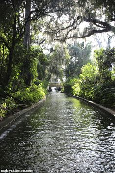 Have Fun at Florida Theme Parks While Staying in Kissimmee Fl Vacation Homes Florida Theme Parks, Orlando Theme Parks, Florida Vacation, Florida Travel, Orlando Florida, Florida Disneyworld, Orlando Disney, Orlando Vacation, Downtown Disney