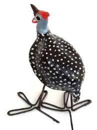 seed pod guinea fowl - Google Search Guinea Fowl, Seed Pods, Seeds, Google Search