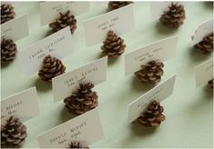 Pine Cone Crafts and Decoration Ideas for the Holidays