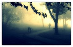 The Mystery Man At The Park HD desktop wallpaper : Widescreen : High Definition : Fullscreen : Mobile