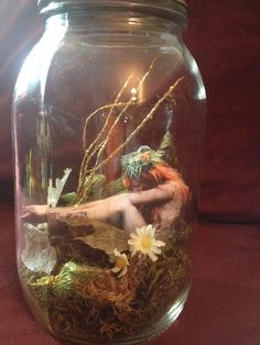 trapped fairy centerpiece - Google Search