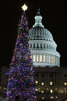 The annual Christmas tree lighting in front of the U.S. Capitol.