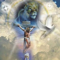 The Lamb of God became the sacrifice, the sacrifice has risen as King, the risen King has brought peace between God and fallen man. A picture says a thousand words for sure.