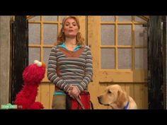 Gina explains Service Dogs Sesame Street