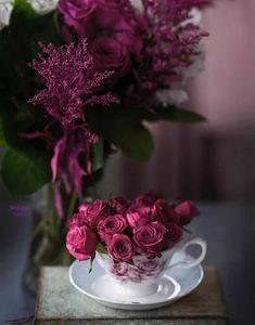 Цветочные Обои, Мудрость, Рамки, Красивые Цветы, Фиолетовый