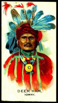 Cigarette Card - Indian Chief, Deer Ham