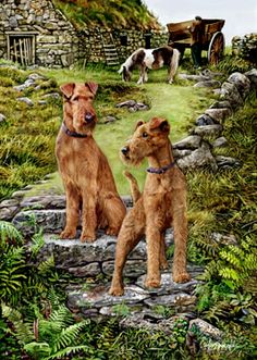 """Irish Terrier Seeing Red image size is 11.5"""" x 15"""" on an 11"""" x 17"""" paper. Printed on quality fine art paper with 200 year archival inks. Signed and numbered by the artist. It is a Limited Edition of 150."""