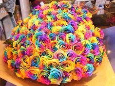 What is a Rainbow Rose ? Rainbow Roses are the multi colored roses which are not artificial. You shall not believe your eyes after looking at these gorgeou Elegant Flowers, Exotic Flowers, Amazing Flowers, Beautiful Roses, Beautiful Flowers, Colorful Roses, Pretty Roses, Beautiful People, Tie Dye Roses