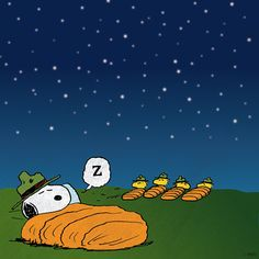 Snoopy and Woodstock go camping