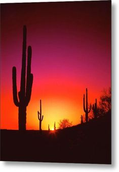 The purple and gold flames of sunset radiate out and cover the Arizona desert near Phoenix. Photo by Frank Houck. Desert Sunset by Frank Houck Beautiful Sunset, Beautiful World, Beautiful Places, Beautiful Pictures, Desert Sunset, Summer Sunset, Purple Sunset, Desert Art, Desert Life