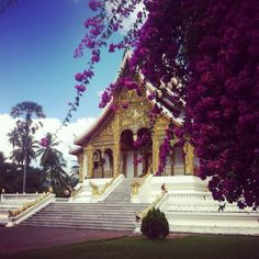 Temples @Luis Vargas Prabang #Laos Luang Prabang, Laos, In 2015, Oh The Places You'll Go, Temples, Photos, Mansions, House Styles, Building