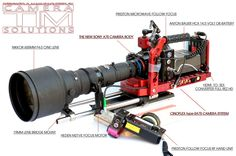 Sony A7S camera body on the Cinoflex Camera System with Nikkor 600mm Cine lens