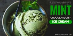 Mint Chocolate Chip Ice Cream - Natural & Low Carb