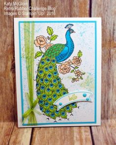 Perfect Peacock, Falling Flowers, Touches of Texture, Thoughtful Banners, Stampin' Up! Hand Made Greeting Cards, Making Greeting Cards, Greeting Cards Handmade, Stampin Pretty, Stampin Up, Perfect Peacock, Stamping Up Cards, Bird Cards, Artist Trading Cards