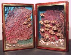SCHOOL SERIES II:Angel fish, fan coral, black coral, seaweed, sand, shells and rocks. Case: 1953 wooden Cuban cigar box, brown wax finish, acrylic paint, plate glass, brass frame and hardware. 5 x 7 x 3 in. (12.7 x 17.78 x 7.62cm.)  Available at Haus Interior.  Inquiries, Offers, Questions, Comments …