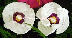 Flores Em Crochê 015 - Flor Papoula feito por Edinir-Croche passo-a-passo. Visite o blog http://www.edinir-croche.com e faça um curso em crochê gratuitamente.