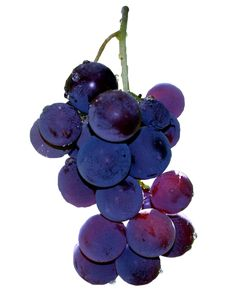 .Grapes Dark Vibrant