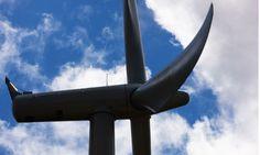 Shetland #windfarm project suffers court setback over rare bird. #WindEnergy