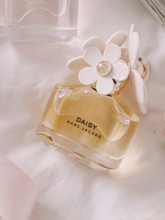 Perfume Scents, Perfume Bottles, Daisy Perfume, Pink Perfume, Best Perfume, Good Perfumes, Cream Aesthetic, Perfume Collection, Makeup Products