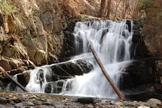 Constitution Marsh and Indian Brook Falls. 1.7 mi / 1.5 hrs
