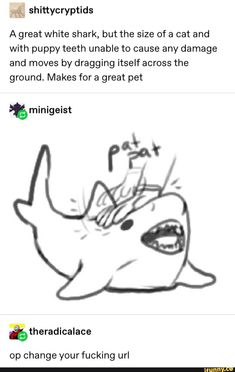 shittycryptids A great white shark, but the size of a cat and with puppy teeth unable to cause any damage and moves by dragging itself across the ground. Makes for a great pet &theradicalace op change yourfucking url - iFunny :) Stupid Funny, Funny Cute, Hilarious, Funny Stuff, Random Stuff, Memes Humor, Funny Memes, Funny Tweets, Animal Memes
