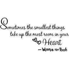 Sometimes the smallest things take up the most room in your heart ...The wisdom of Pooh ..