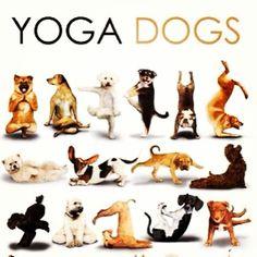 Linduras yogis
