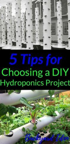 5 Tips for Choosing a DIY Hydroponics Project | Hydroponics | DIY Hydroponics | Hydroponics for beginners | Indoor Hydroponics | Hydroponic Wall | Hydroponic System | Hydroponic Gardening | Homemade Hydroponic systems | Hydroponic Nutrients | Kratky Hydroponics | Greenhouse Hydroponics | Hydroponics Design | Hydroponic Vegetables | Backyard-Eden.com #hydroponics #hydroponicsystem #hydroponicgardening #hydroponicvegetables #backyardeden #hydroponicsvegetables #hydroponicsgreenhouse