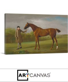 Ready-to-hang Lustre Held by a Groom 1762 Canvas Art Print for Sale canvas art print for sale. Free hanging accessories and insurance. Art Prints For Sale, Luster, Canvas Art Prints, Groom, Horses, Painting, Animals, Animales, Animaux