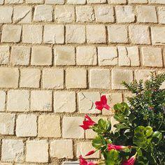 Granit Pflastersteine Verlegen Ландшафт Pinterest Garden Ideas - Granitfliesen legen