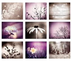 Bathroom/Office Decor: Purple, Brown Photography Set - A set of nine fine art photographs in a mix of modern purple and brown tones. This set includes a discount for
