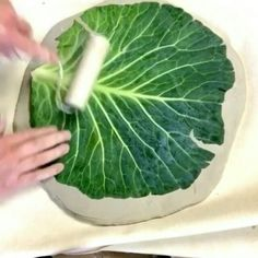 ✔ Please doubletab and tag a Friend below 🎉 Read the original post below. ・・・ The cabbage leaf platters are all one of a… Pottery Houses, Slab Pottery, Ceramic Pottery, Pottery Art, Ceramic Art, Pottery Workshop, Ceramic Workshop, Diy Tableware, Cabbage Leaves