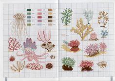 sea creatures & corals