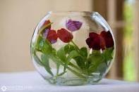 tulip flowers in globe vase centerpiece