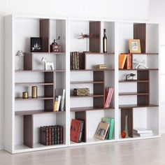 Contrast Modern Bookcase - Bookcases at Hayneedle