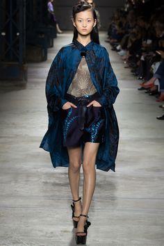 Dries Van Noten Spring 2016 Ready-to-Wear Fashion Show - Wangy Xinyu